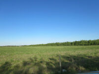 Minutes from Bonnyville! (Lot 1) Hwy 660 & Rge Rd 480