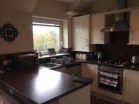 Luxury 1 Bedroom Flat for Rent in SA1 Swansea - £450.00