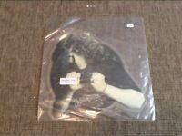 """Whitesnake 7"""" Picture Disc"""