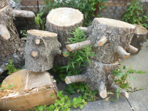 FREE ** FIREWOOD OR WOOD FOR  CRAFTS, LANDSCAPING