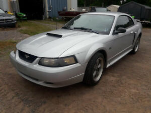 2001 Ford Mustang GT   57,000 km's