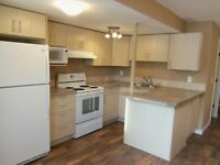 2 Bedrooms 1 Bathroom Basement for Rent in High River!!!!