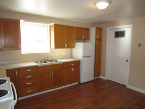 3 bedroom lower level duplex in Point Park available-IMMEDIATELY