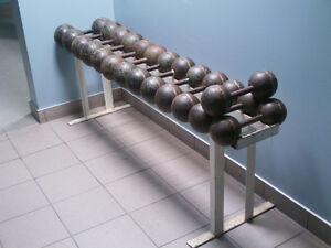Dumbbells / poids Louis Cyr 690 lbs. with rack