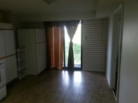 TWO BEDROOM WALKOUT BASMENT FOR RENT (pickering)