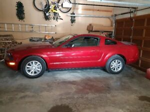 2008 Ford Mustang Coupe (2 door)