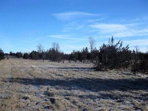 Level Vacant Land for Sale Belleville Belleville Area image 5