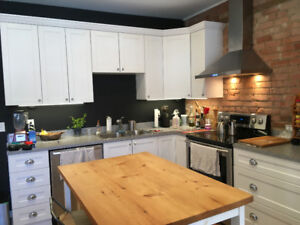 Large renovated  6 ½ room apartment for rent with a backyard