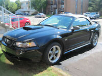 2002 Ford Mustang premium mach1 Cabriolet
