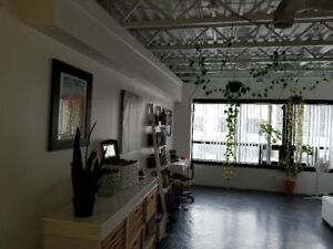 Beautiful Downtown loft  for May 1, 2019