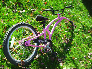 Kid's Adams Trail-a-Bike