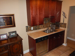 Complete set of Kitchen cabinets and countertops