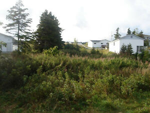 Land for Sale in Catalina with water vew St. John's Newfoundland image 6