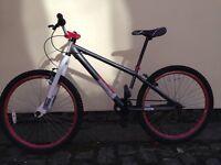 X-Rated Mesh Dirt Jump bike Adult/Teen