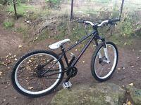 Custom Mountain bike (Jump bike, street bike)