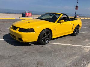 2004 Ford Mustang cobra convertible
