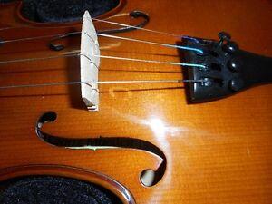 4/4 Violin / Fiddle