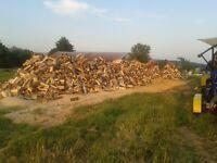 Service de coupe pour bois chauffage (Processeur à bois mobile)