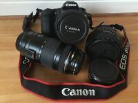 Canon EOS 60D 18.0 MP Digital SLR Camera - Bundle with Lenses.