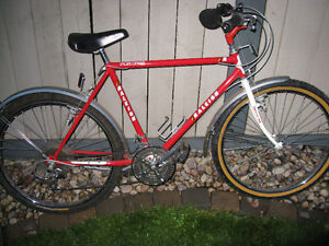 Raleigh Portage 15 speed mountain bike