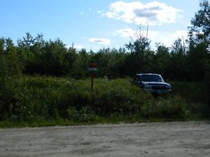 15 ACRE ( ATTENTION ) *Chasseurs ORIGNAL* MOOSE Hunter*