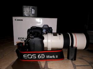 6d  MK II et 300 MM F/4 IS USM