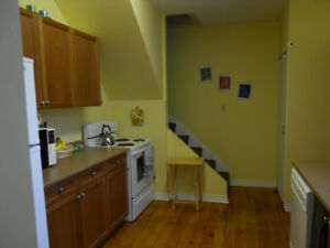 ONE BEDROOM LOFT STYLE DOWNTOWN LOCATION