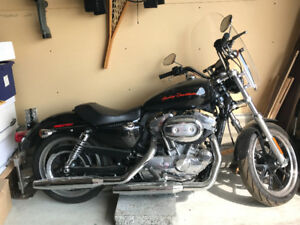 883 Sportster Super Low Basically Brand New