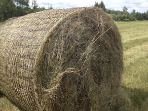 Small square hay bales
