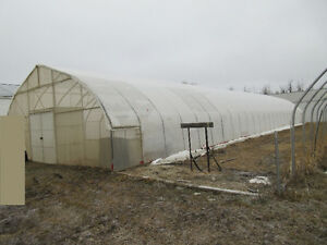 Industrial Greenhouses for sale