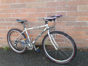 "Excellent condition 17"" DIAMOND BACK ASCENT EX (tuned up)"