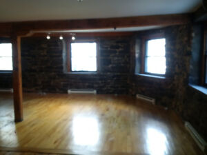 Huge Old Montreal Loft - Grand Loft 2 chambres Vieux-Montreal