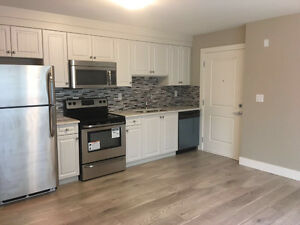 Coquitlam new house ground level 2 beds+1 bath unit for rent.