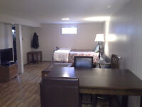 MINT Furnished apartment. Nightly or weekly or Monthly .