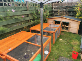 Rabbit Hutch and two runs with tunnels