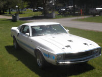 1969 Shelby GT500 Mustang: NEW PRICE