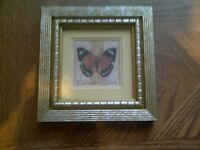 """CADRE DE COLLECTION SHELLY HELY 6""""1/2 X 6""""1/2"""