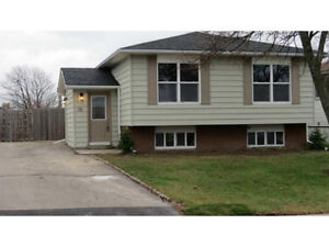 Gorgeous 3+2 detached fully renovated in Hamilton Mountain East
