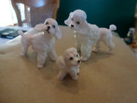Vintage set of 3 miniature poodles