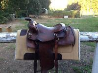 """15"""" Saddle"""