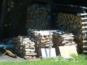 Dry wood for sale