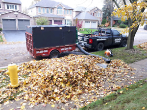 Dump leaves & yard waste