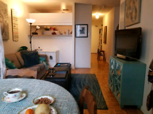 Roommate needed at College Subway Station