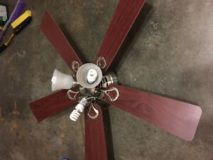 52 inch Hunter Douglas ceiling fan