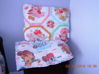StrawberryShortcake,DallasCowboyspillows Jasmine/Belle pillowcas