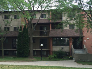 3-Bedroom clean and Spacious in university area for great price Kitchener / Waterloo Kitchener Area image 1