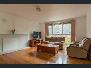 3 bedroom house with furniture near monash uni Notting Hill Monash Area Preview