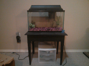 Fish tank & supplies