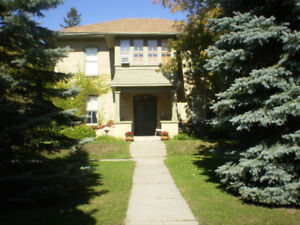In-between Houses?  940sf 2-storey Avail. March 1