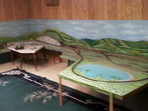 HO train layout ****PRICE REDUCED, MUST GO***